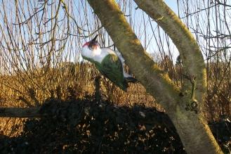 Ein Plastikspecht im Baum